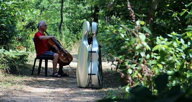 Southern summer sun at Belle Serre and autumn cello days in the UK….